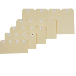 ESSELTE SHIPPING TAGS No.8 80x160mm Box of 1000